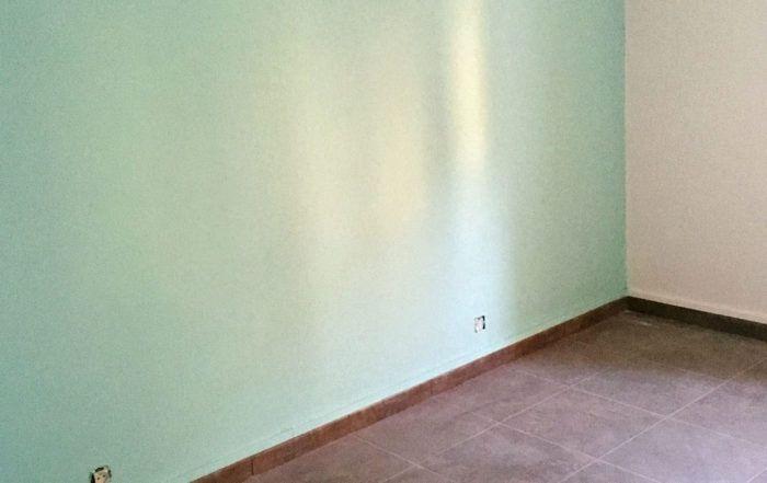 pintura y eliminación de estocado de Suri Pintor